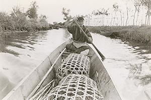 カモカゴを運ぶ舟