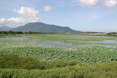 写真2:佐潟の風景