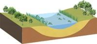 水深が浅くなり、陸化がかなり進行します。植物相はもっとも多様な段階です。