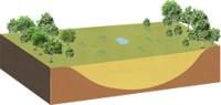 地下水からの供給もとだえ、雨水だよりの高層湿原を経て、最終的には草原になります。